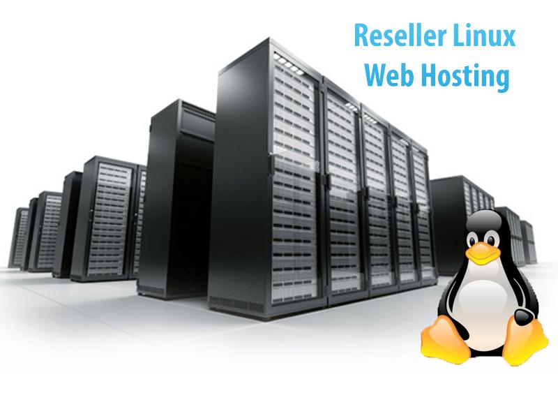 web hosting linux: