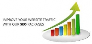 SEO Packages graph